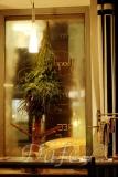 choinki w central cafe