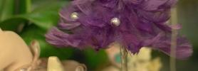 028_kwiaciarnia_dafe_wroclaw_dekoracje_bozonarodzeniowe