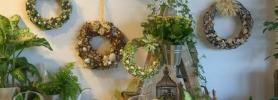 kwiaty_wroclaw_dafe