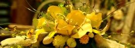006_wielkanoc_kwiaciarnia