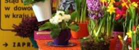 wiosna_poczta_kwiatowa