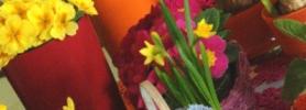 wiosna_wroclaw
