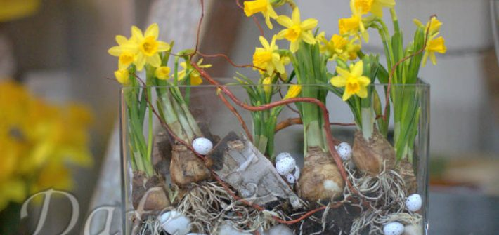 Kompozycje W Szkle Kwiaciarnia Dafe