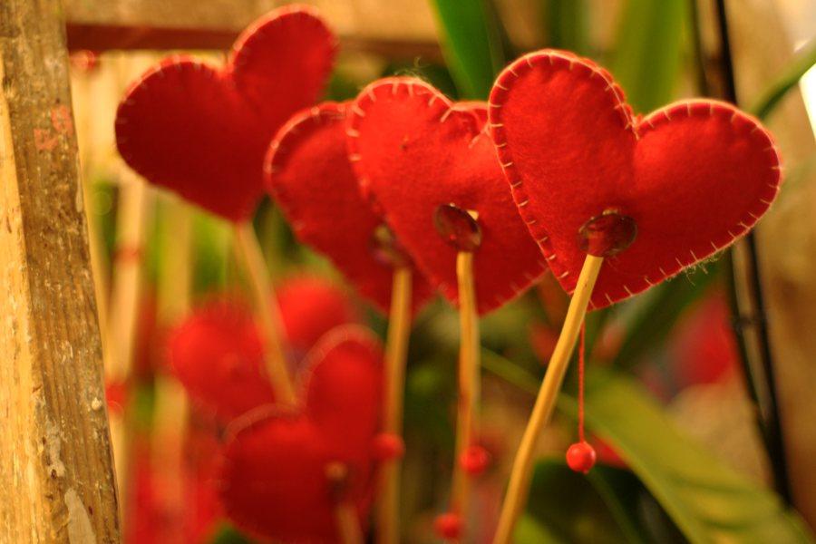 dostawa kwiatow we wroclawiu