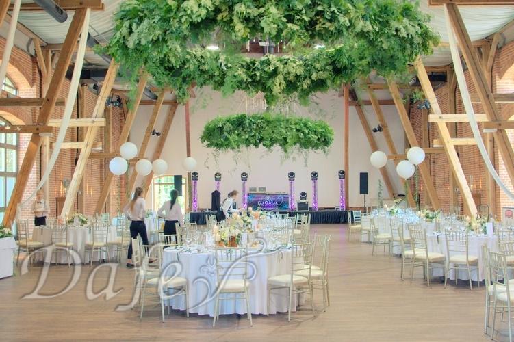 zielona sciana_12b wesele w topaczu.NEF